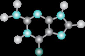 La Proteína del Colágeno es la Estructura más Compleja de Aminoácidos
