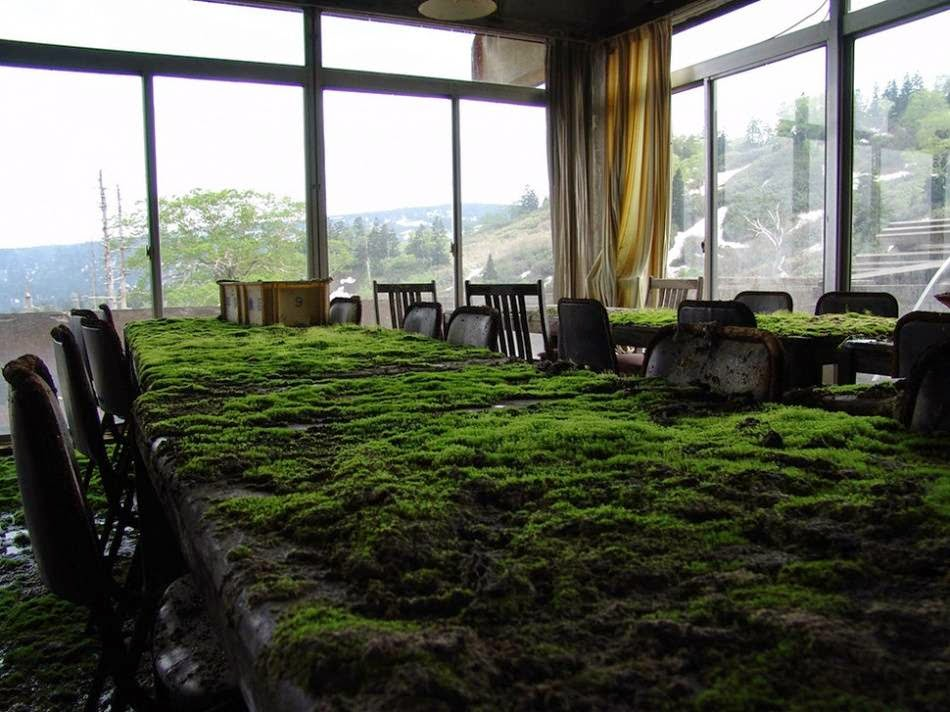 "Abandoned Hotel in Japan gradually ""eaten up"" by nature"