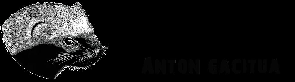 ANTON GACITUA