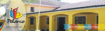Visite web Municipalidad de Pelarco