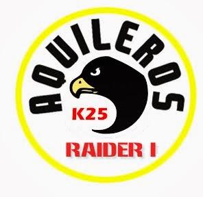 Logo raider