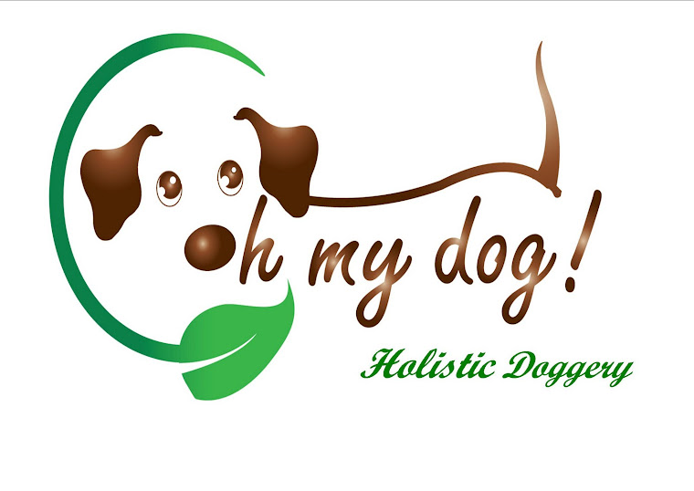Oh My Dog! Holistic Doggery