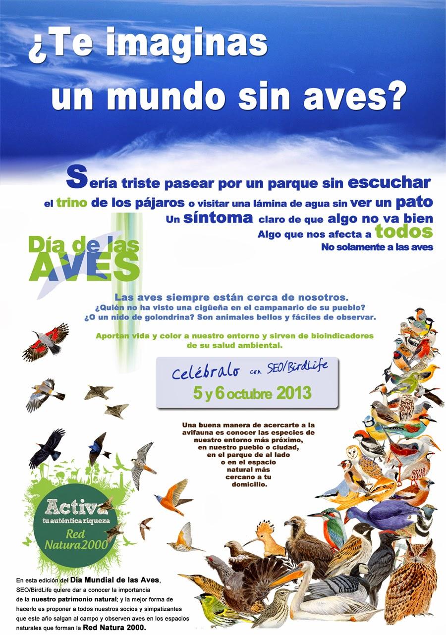 SEO/BIRDLIFE. DIA DE LAS AVES 2013. MADRID. OCIO VERDE