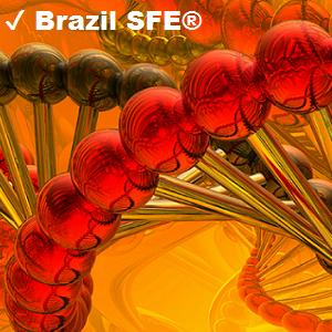 ✔ Brazil SFE®