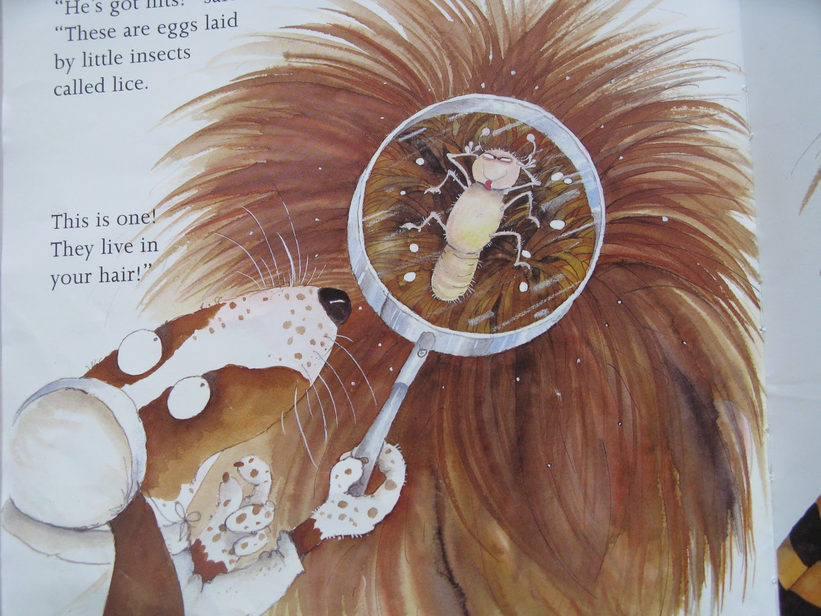 According to information from the following site http://www.health.vic ... Head Lice Eggs On Blonde Hair