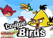 Angry Couple Birds