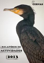 Relatório de Actividades CERVAS 2013