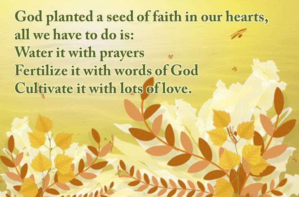 Sowing Seeds Of Faith