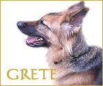 Grete