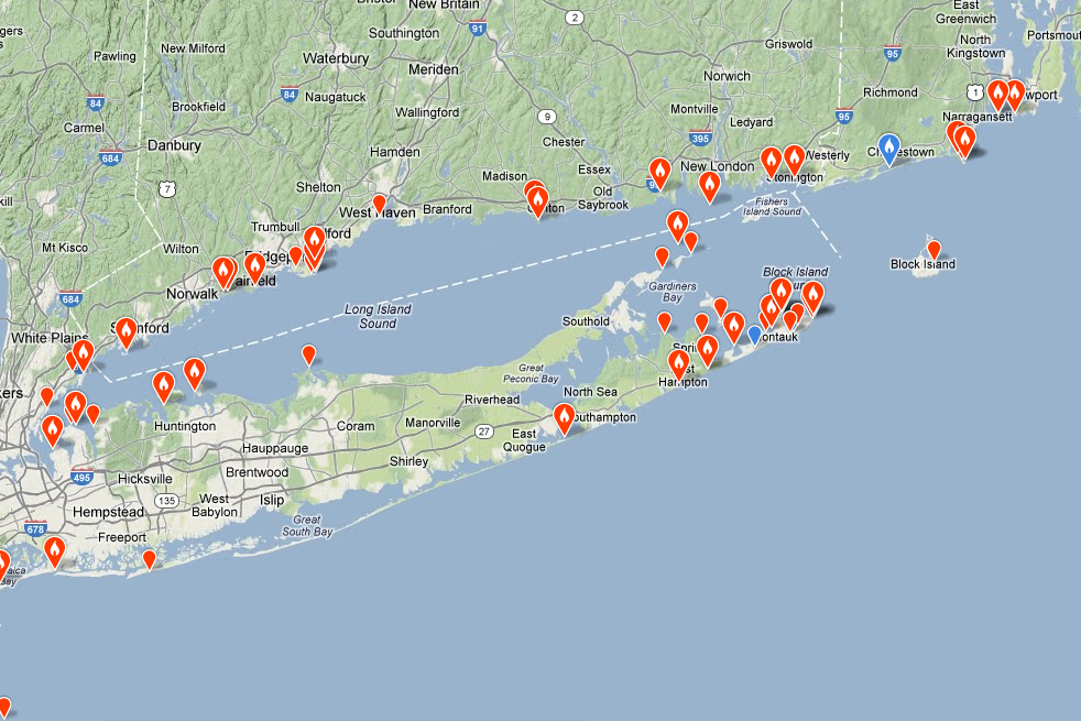 Connecticut audubon society razorbills in long island sound for Long island sound fishing spots