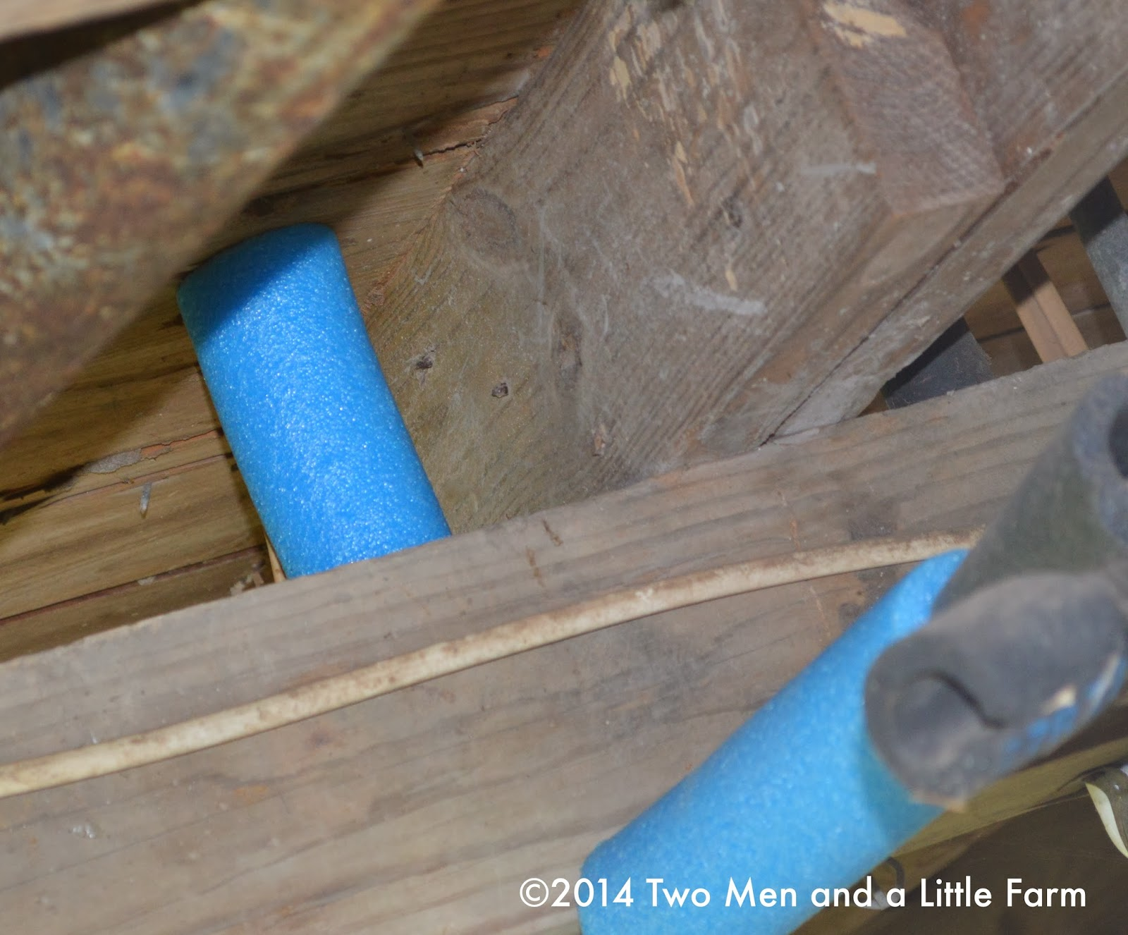 Two Men and a Little Farm: POOL NOODLE FOAM PIPE PROTECTOR FOR FREEZE