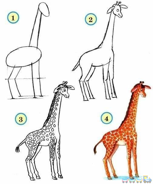 Drawing Simple Animal Giraffe pics
