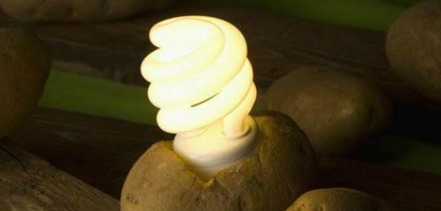Kentang menjadi sumber listrik