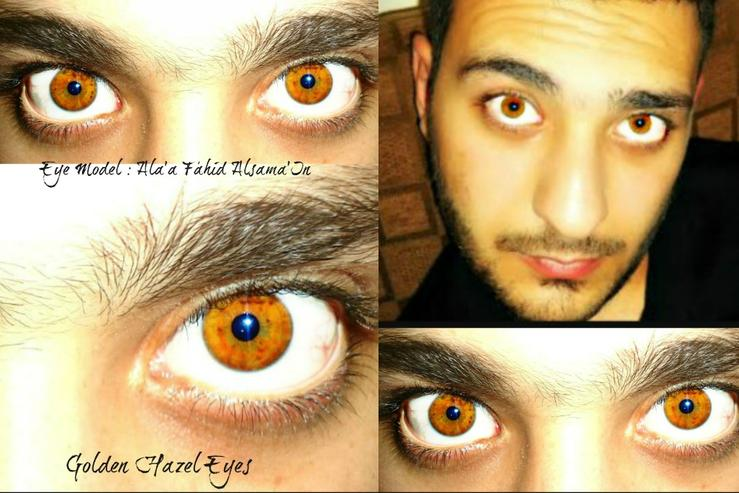 Rare Golden Hazel Eyes - Voted the Most beautiful eye color on thousands of our internet polls.