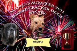 Mischkas Beitrag zum Wettbewerb