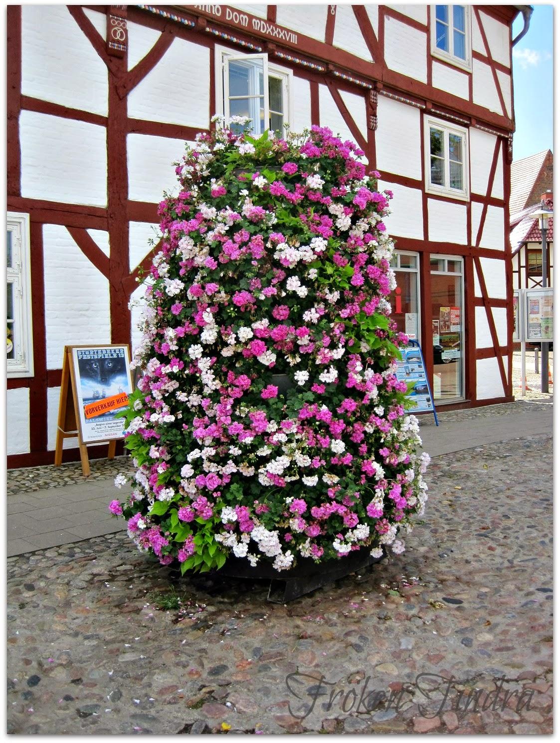 Rügen, Tyskland, Juli -13