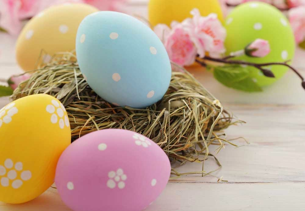 easter-holiday-family-package-at-metro-hotel-sydney-central