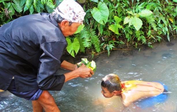 Ritual Koloan, tradisi sunatan suku Osing, Banyuwangi.