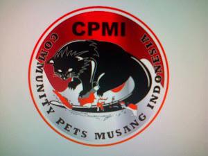 Website CPMI