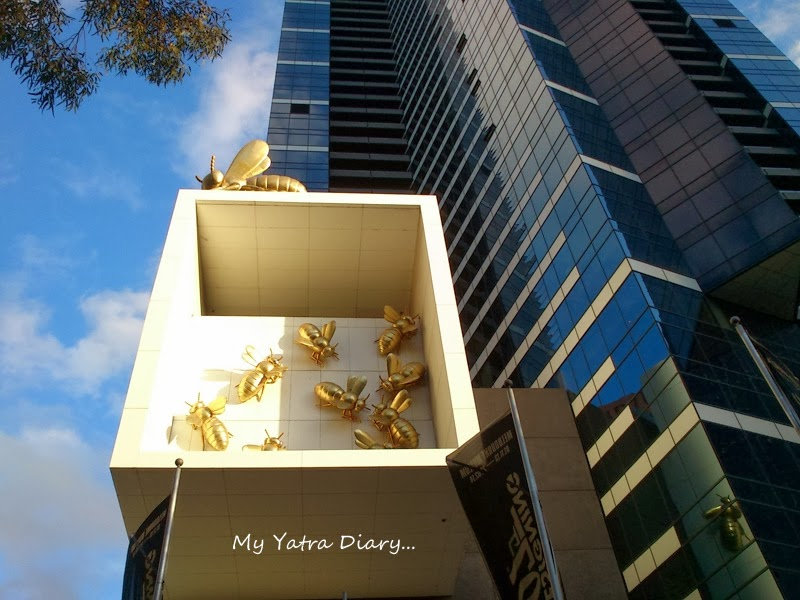 Artistic Bees at the Eureka Sky deck, Melbourne Victoria Australia