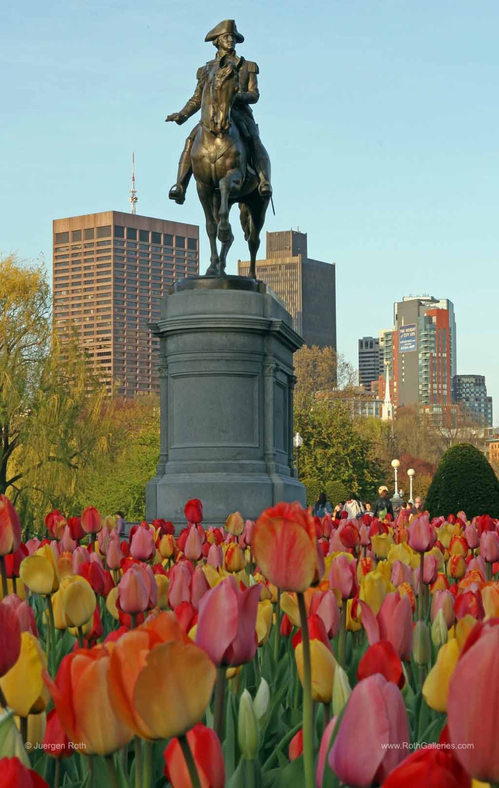 http://juergen-roth.artistwebsites.com/featured/george-washington-at-the-boston-public-garden-juergen-roth.html