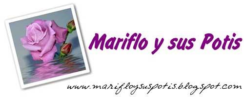 Mariflo y sus potis blog de belleza