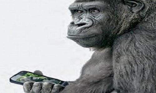 O Gorilla Glass Informática Educa...