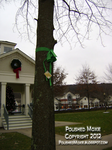 Image of one of 26 trees in neighboring town to Sandy Hook decorated with a green ribbon and a victim's name.