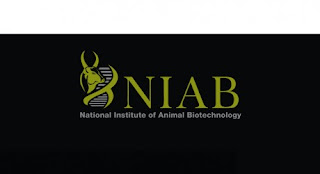 National Institute of Animal Biotechnology (NIAB),railway vacancies 2011, government job vacancies, jobs in railways