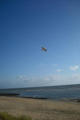méditer en toutes circonstances, y compris à la plage