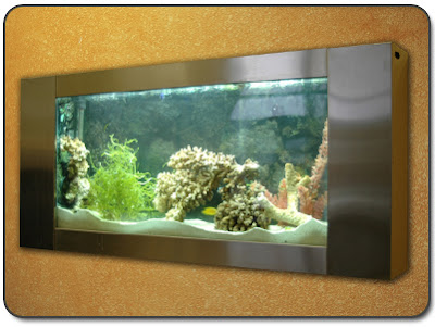 wall-mounted-aquarium