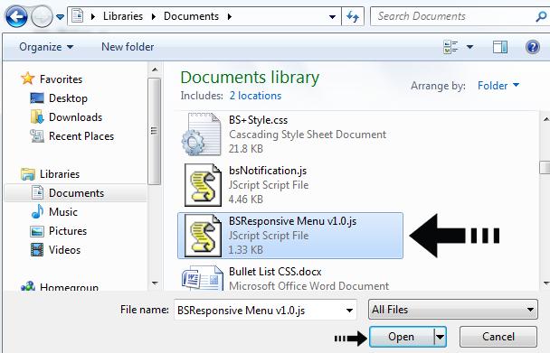 JS files