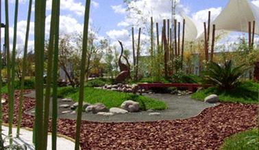 fotos ideas jardines colgantes creativos