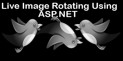 Image Flipping Using ASP.NET(WebImage helper)