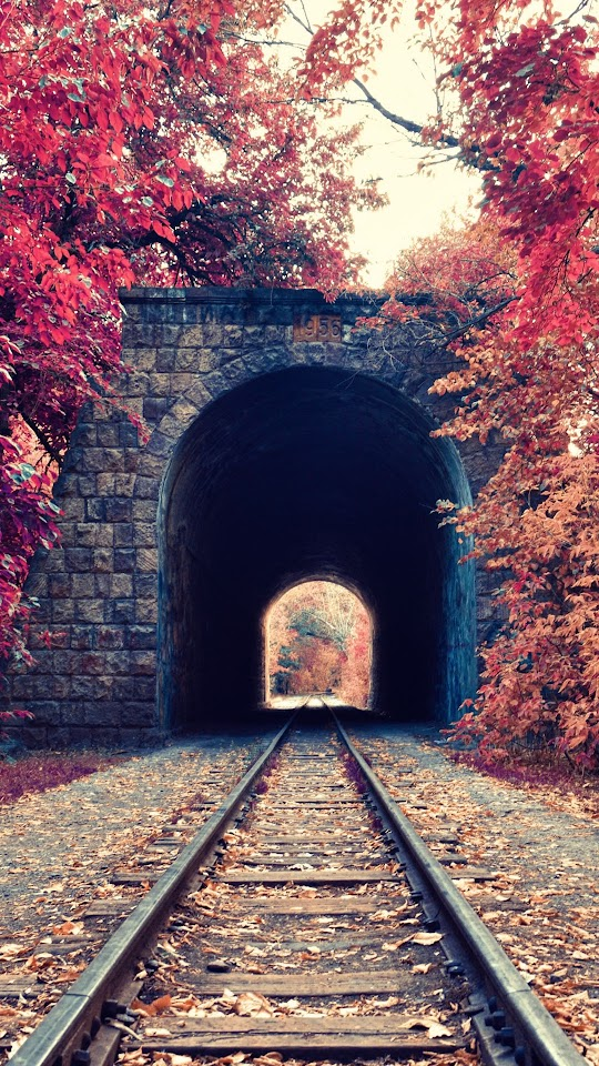 Autumn Train Tunnel Red Leaves  Galaxy Note HD Wallpaper