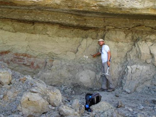 Paleontologist Andrew Farke, lead author of the study naming Dahalokely, at the discovery site for the animal. Copyright Andrew Farke and Joseph Sertich