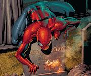 Spiderman spiderman wallpaper