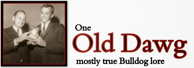 One Old Dawg