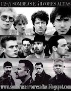 U2 Sombras E Árvores Altas