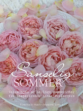 Boken Sanselig sommer!