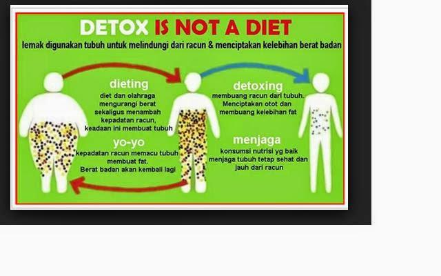 ★ Jus Untuk Diet Dan Detox