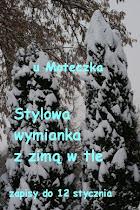 Wymianka Zimowa u Moteczka