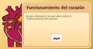 http://www.primaria.librosvivos.net/archivosCMS/3/3/16/usuarios/103294/9/corazon_cono4EP_ud2_02/frame_prim.swf