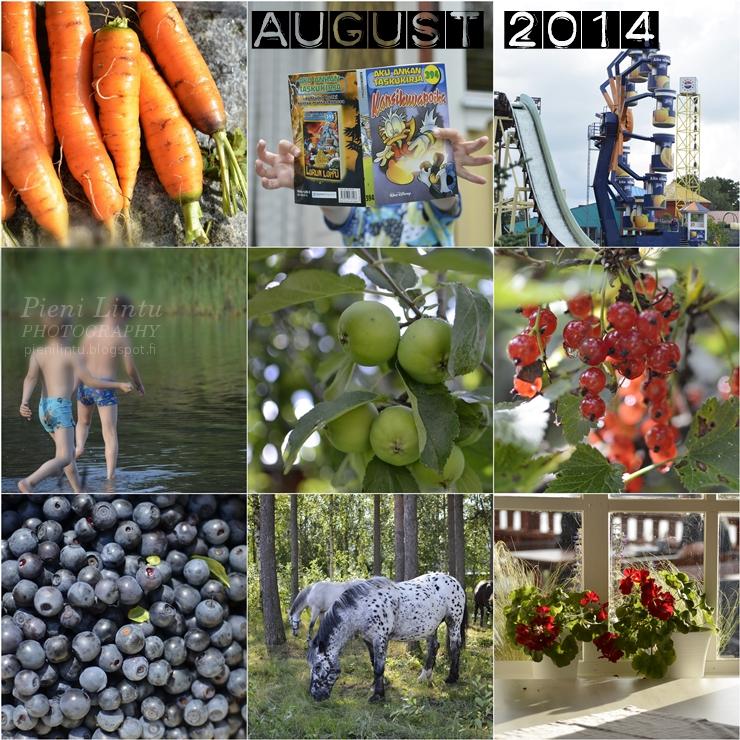 http://www.pienilintu.blogspot.fi/2014/08/august-memories.html