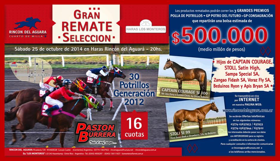 REMATE RDA - LM - 2014