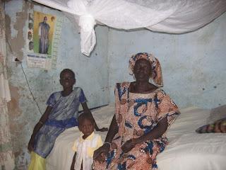 Essays On Malaria