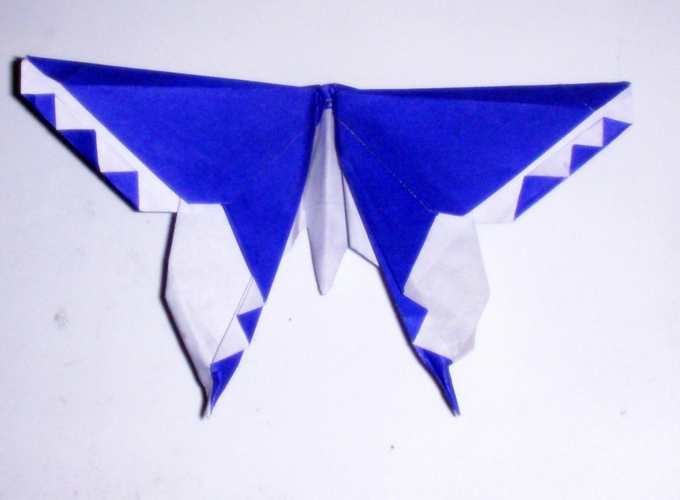 michael lafosse butterfly
