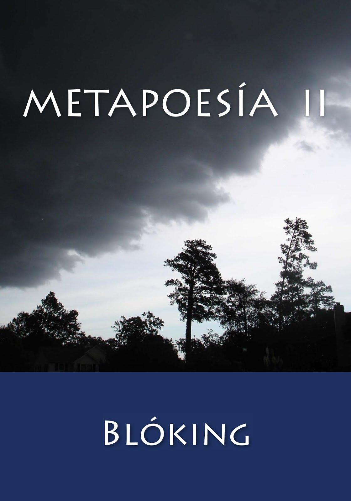 #Obra 31 - Metapoesía II