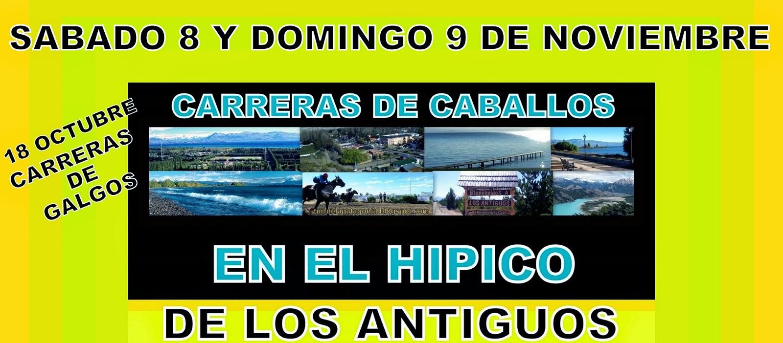 http://turfdelapatagonia.blogspot.com.ar/2014/10/8-y-911-carreras-de-caballos-en-los.html