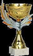 Наш блог удостоен Кубка Признания